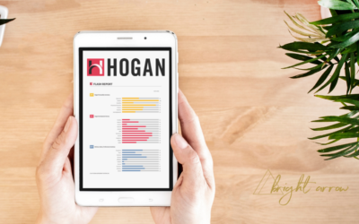 What the Hogan Assessment Revealed to Me About My Leadership Style