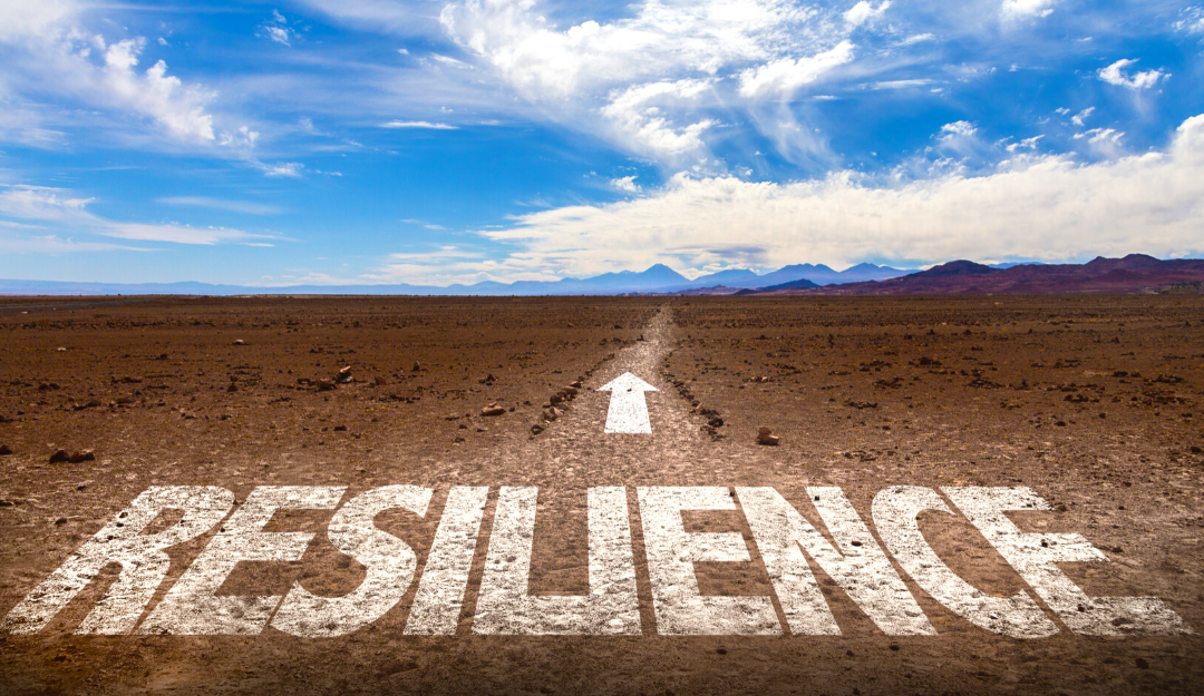 What Does Resilience Mean Now (at Home and Work)?